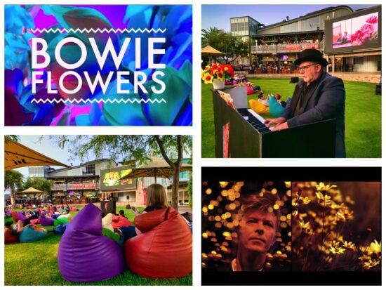 Bowie Flowers